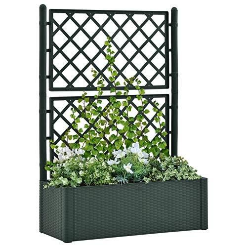 Festnight Jardinera con Celosia y Sistema de Riego Automático Verde